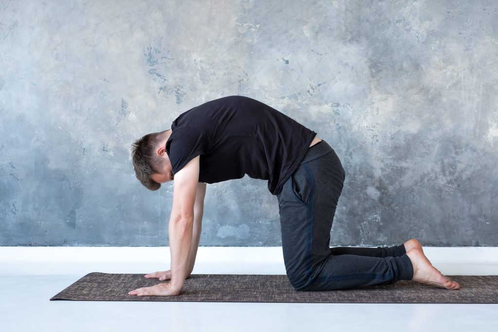 Cat Cow Stretch for Lower back pain